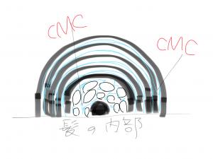 CMCって髪の毛を綺麗に見せるために重要なモノ!